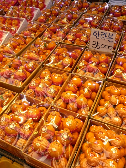 Tangerines in the market - about $40 a box