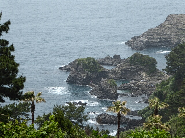 Coastal rock pools at the end of 7.1