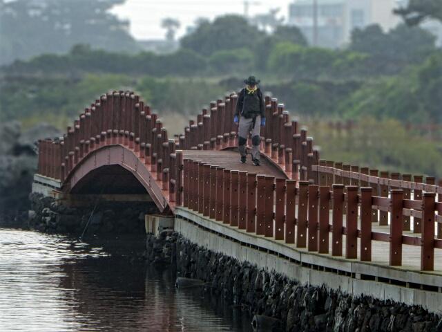 Crossing a bridge in the Wetlands