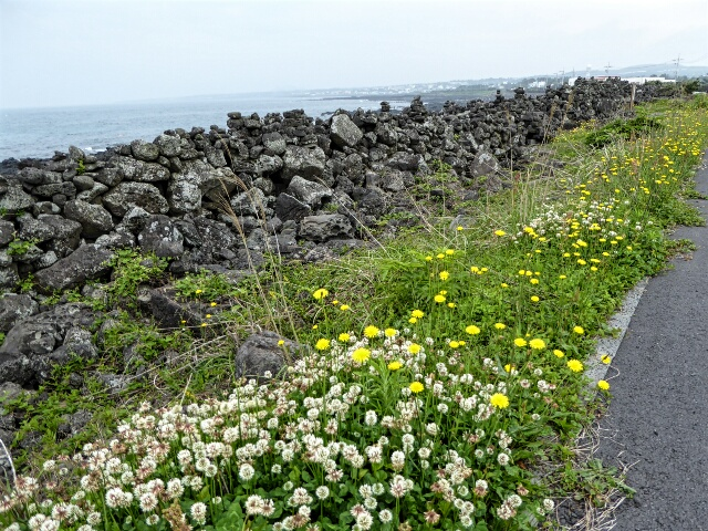Great Wall of Jeju, 120km long, built in 1270 to deter invaders