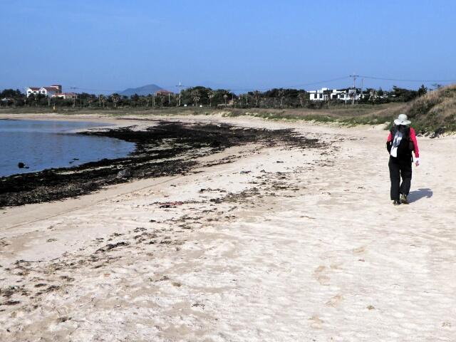 ... along the beach