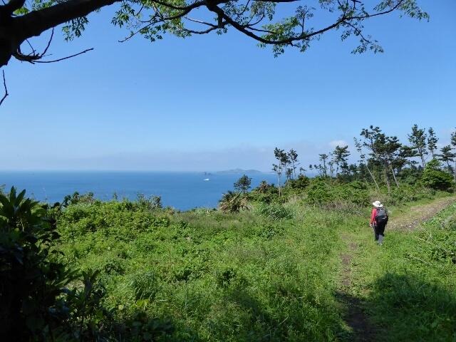 Path along the cliff, air fresh after the rain