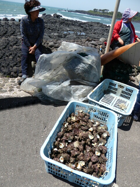 No diving with the wind today so women are selling shellfish by the roadside