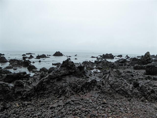 A rough jagged coastline