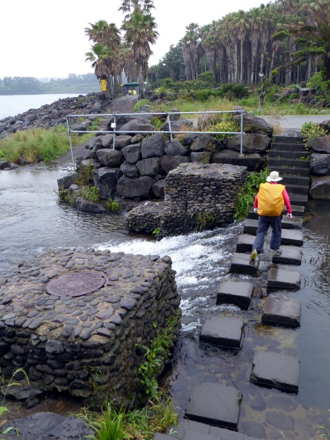 Stepping stones to cross a river