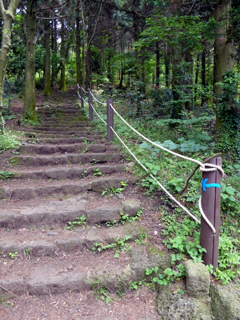 Stone steps to the top of the Jeoji Oreum