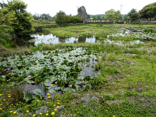 The Wedding Pond is fed by springs