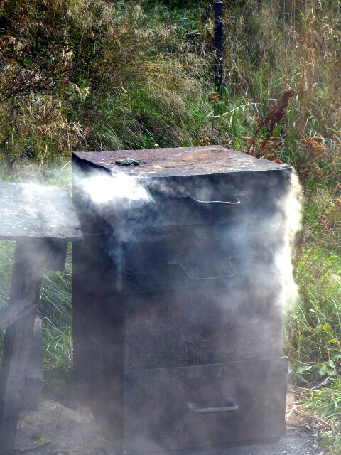 Lake fish being smoked for ...
