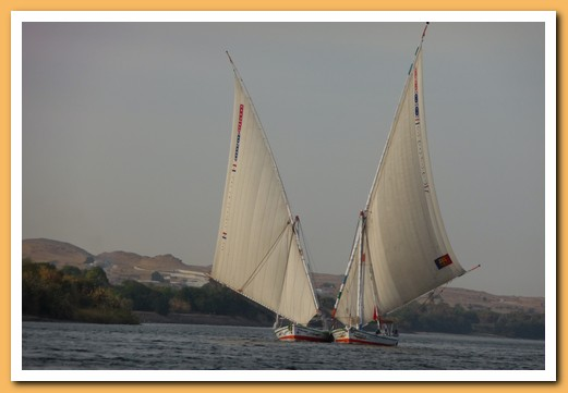Two fellucas sailing together