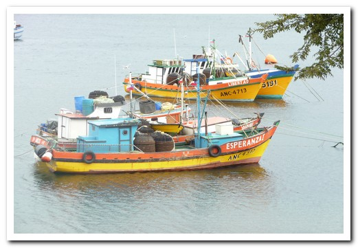 Colourful fishing boats seen all around Chiloé