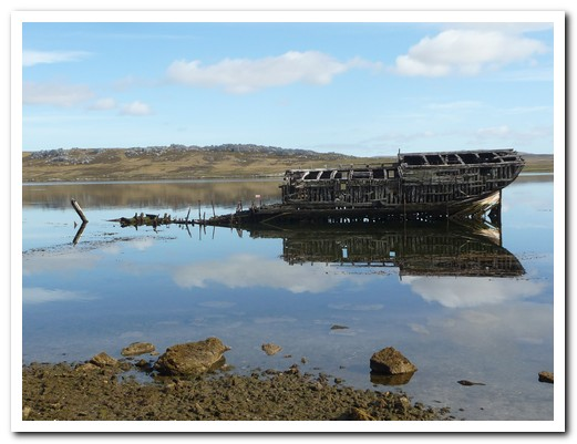 There are many ship wrecks at Stanley