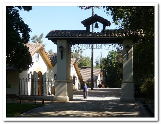 Concha y Toro vinyard