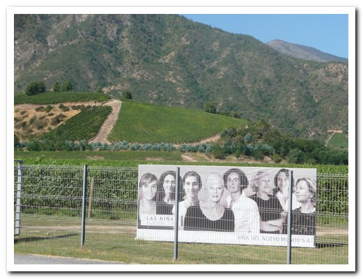 Viña Las Niñas - all female winery in the Colchagua Valley