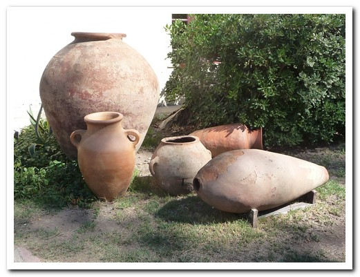 The grape juice was fermented in clay pots buried in the ground