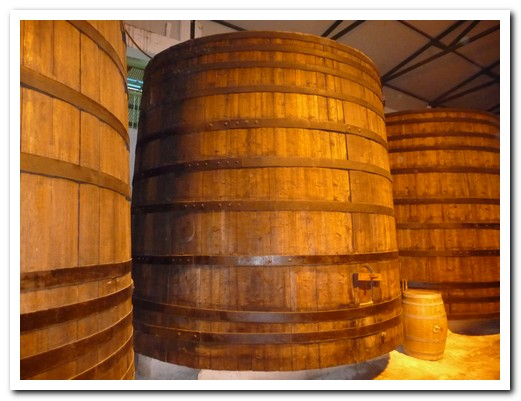 The wine used to be fermented in huge wooden barrels