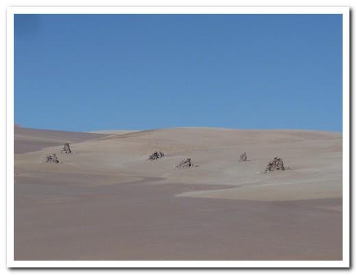 Dalí desert