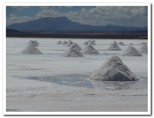 Piles of salt ready for processing