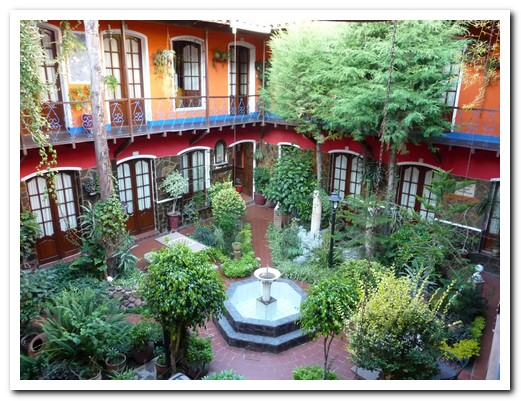 The plant filled courtyard of our hotel