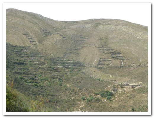 Old Inca terraces, no longer used