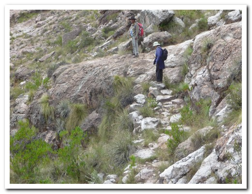 Another Inca footpath