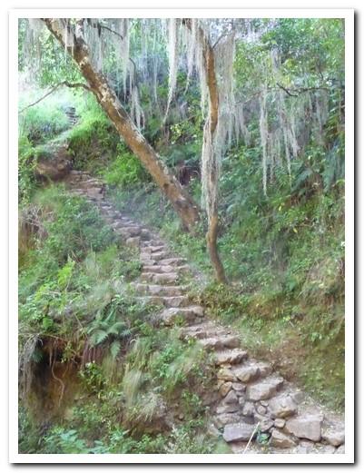 Inca steps leading to Incallajta