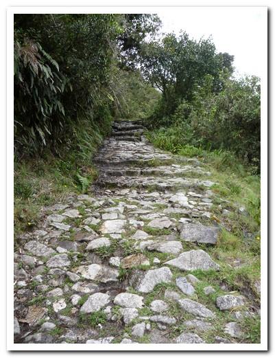Beautiful 900 year old path