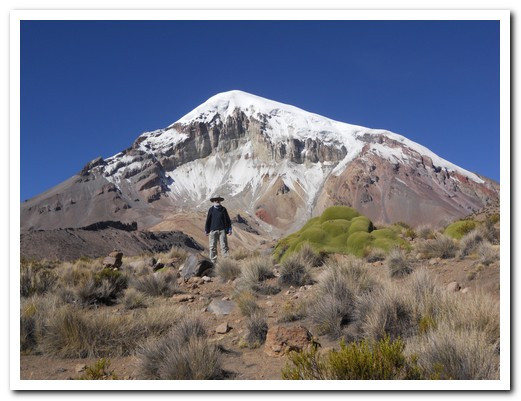 A trek to Sajama base camp