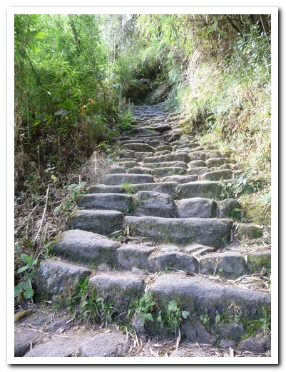There are thousands of old worn steps on the Inca Trail