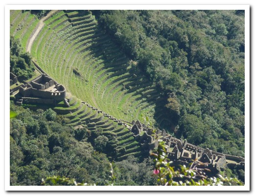 Wiñaywayna Inca terraces