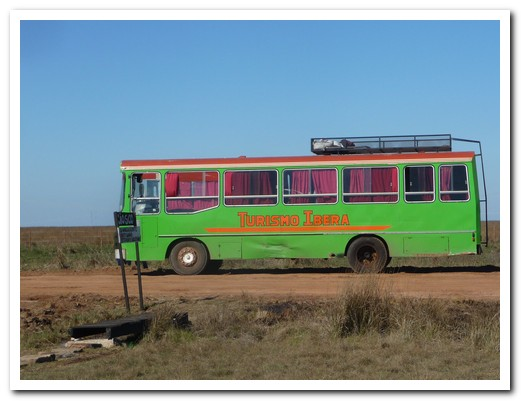 Local bus to the wetlands
